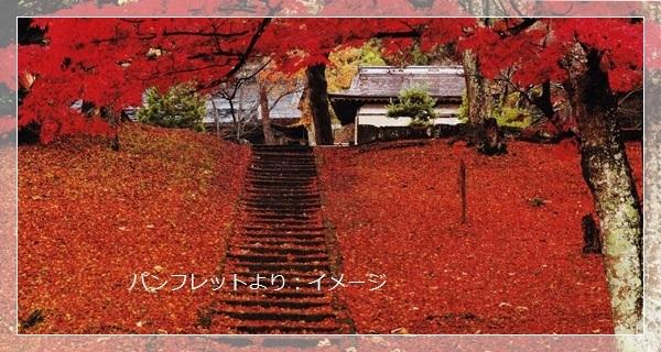 14土神神社イメージ.jpg