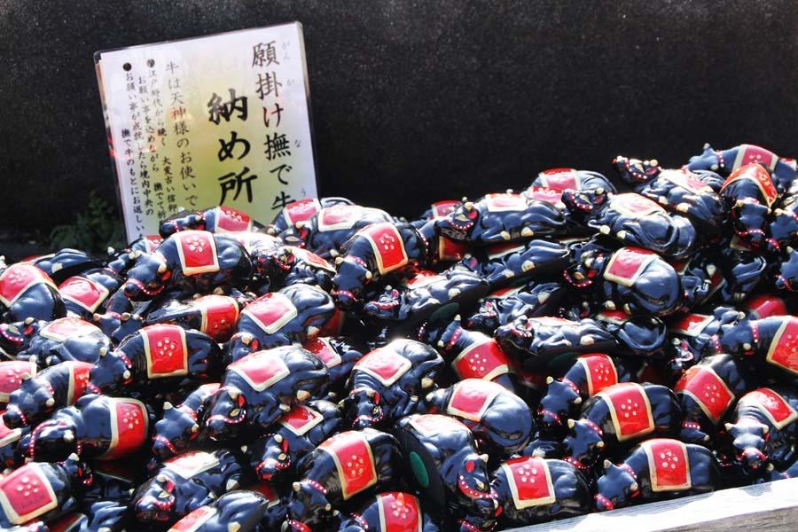 iwazu-1050.JPG