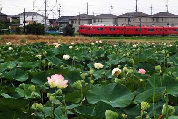 takemura-2010.JPG